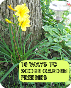 10 Ways to score garden freebies