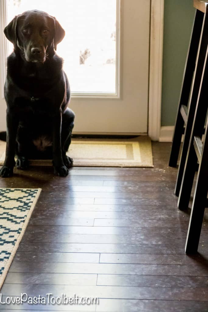 Ever feel like your hardwood floors control you? Take back the control and Save Your Sanity with Bona®