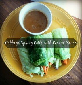 Cabbage Spring Rolls with Peanut Sauce