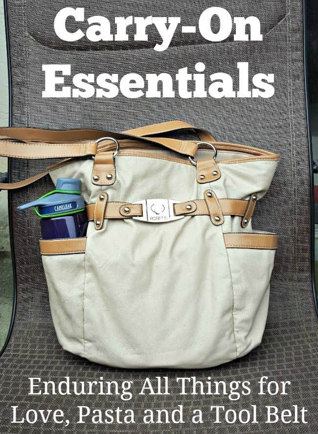 Have some traveling coming up? Check out this great list of Carry-On Essentials for your next trip. Click thru for a great list or Repin for later