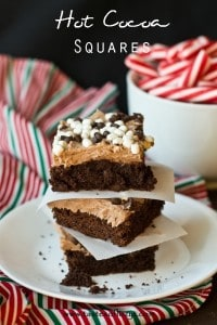 Hot-Cocoa-Squares-Tastes-of-Lizzy-T
