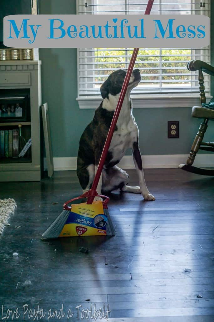 My Beautiful Mess- Love, Pasta and a Tool Belt #SweepTheMess #ad | dogs | mess | cleaning |