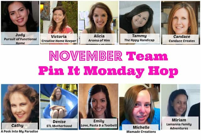 Co-Hosting Pin It Monday Hop #34