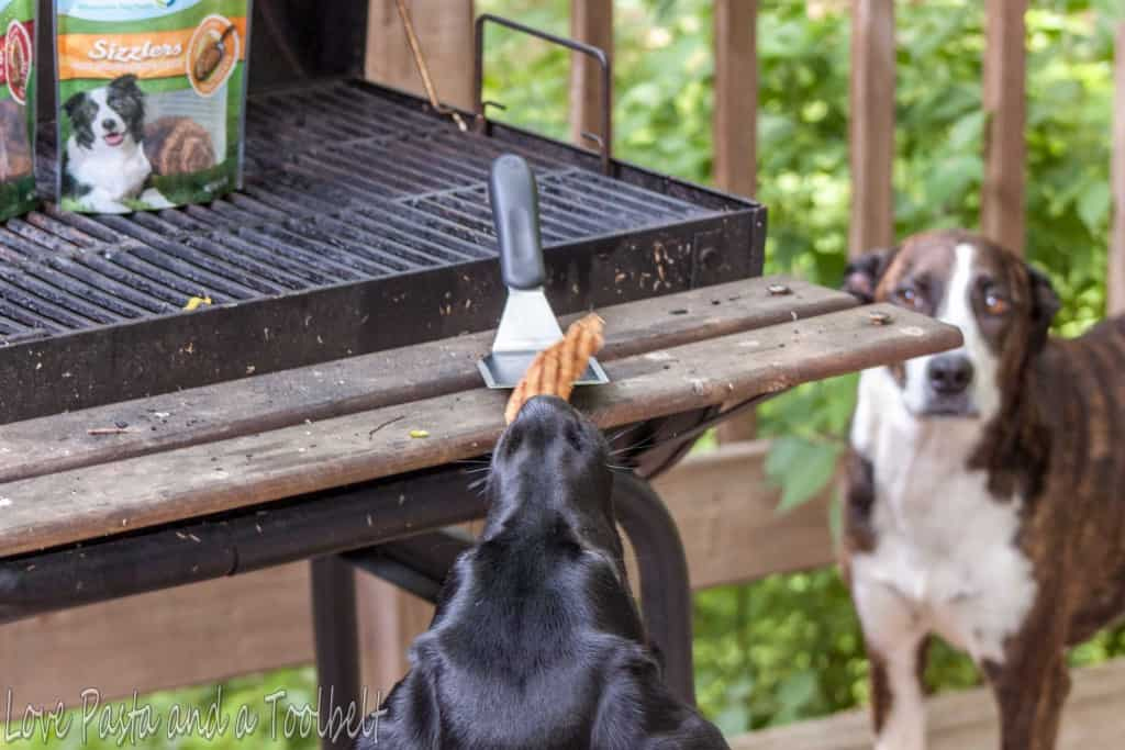 Unconditional Love with Nudges® Grillers- Love, Pasta and a Tool Belt #ad #NudgeThemBack | pets | dogs | dog treats | dog care | pet care |