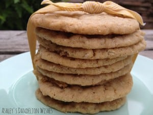 Oatmeal_Snickerdoodles_1