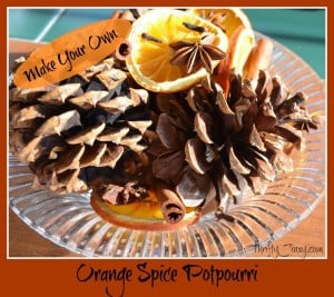 Orange Spice Potpurri