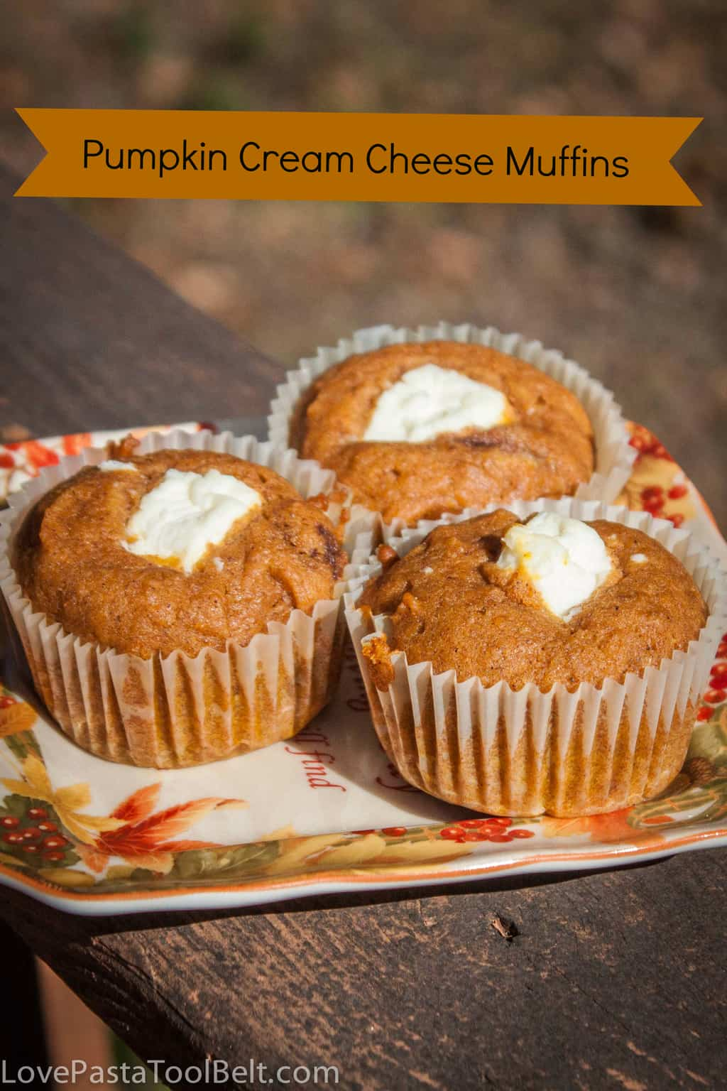 Pumpkin Cream Cheese Muffins - Love, Pasta, and a Tool Belt