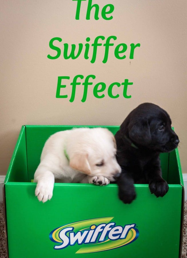 The Swiffer Effect
