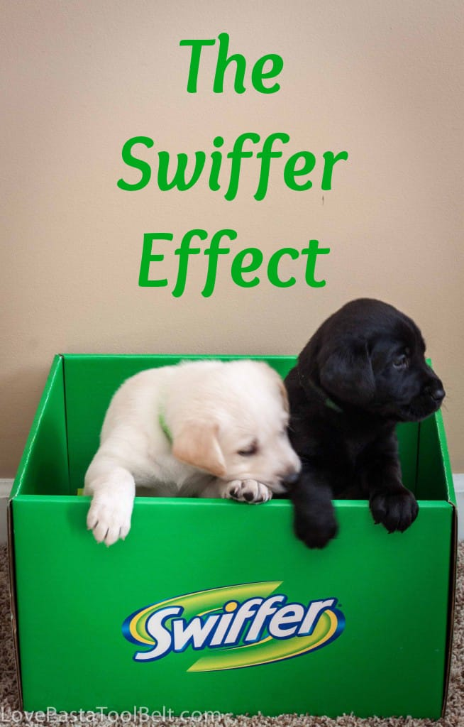 The Swiffer Effect is perfect for cleaning up all those messes your pets make- Love, Pasta and a Tool Belt #SwifferEffect #ASPCA #CleverGirls