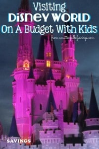 Visiting-Disney-World-On-A-Budget-With-Kids-683x1024