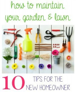 My contributor Jenna is sharing her 10 Tips to Maintain Your Garden and Lawn- Love, Pasta and a Tool Belt | gardening | lawn | garden | outdoor | flowers |